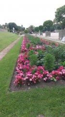 jardin-du-Luxembourg--rando-Louis-03-juillet-16.jpg